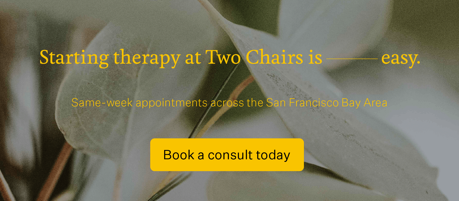 Click here to book a consult at Two Chairs